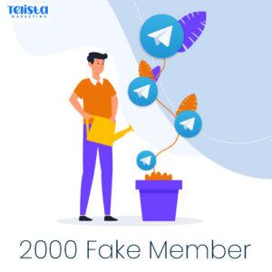 2000 Fake telegram member