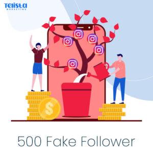 500-fake-follower