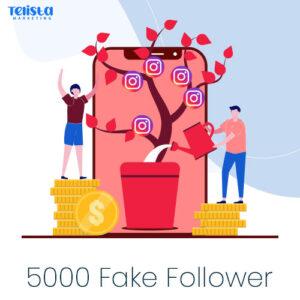 5000-fake-follower