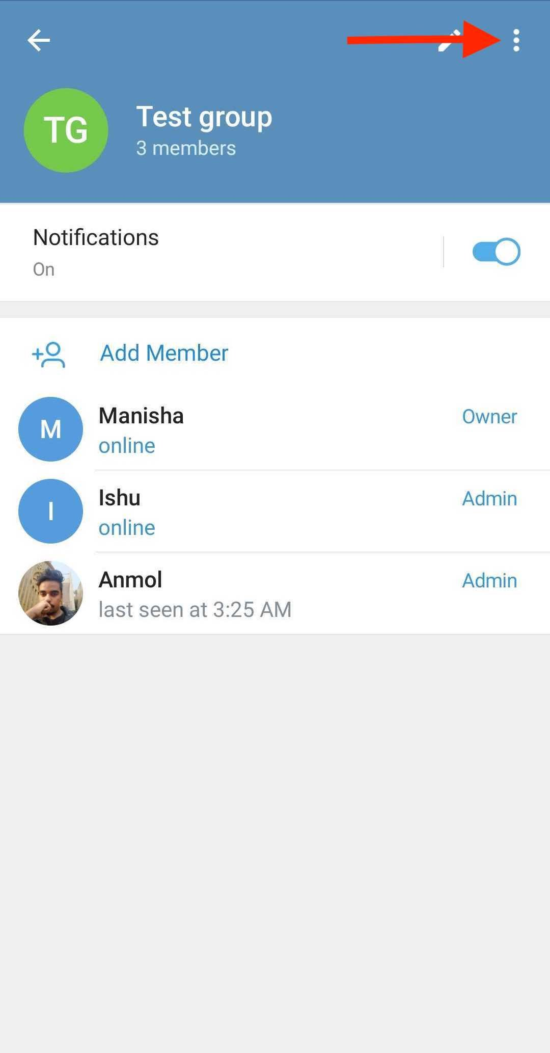 How to activate group call in Telegram?